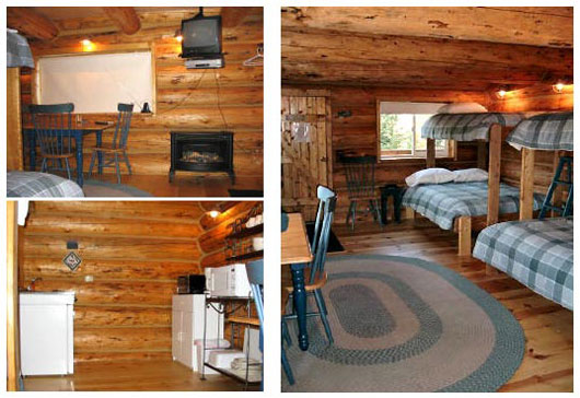 Small cabin decorating ideas and design plans03 for Tiny cabin ideas