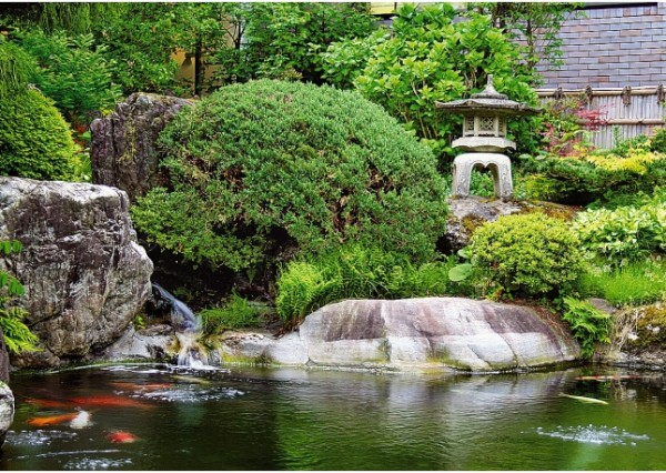 Japanese garden pond for Japanese koi water garden