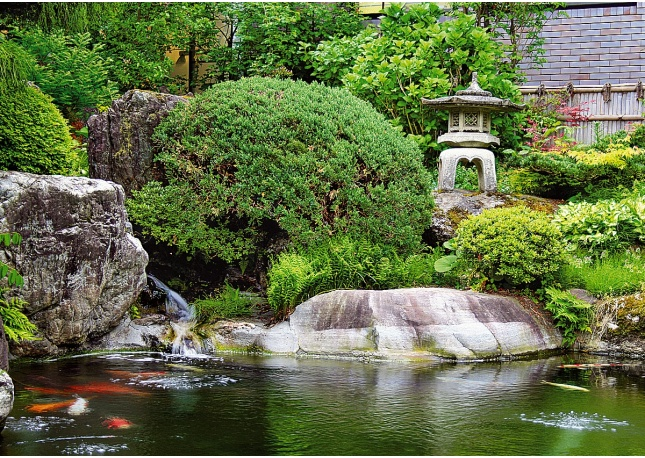 Japanese garden pond for Your pond japan