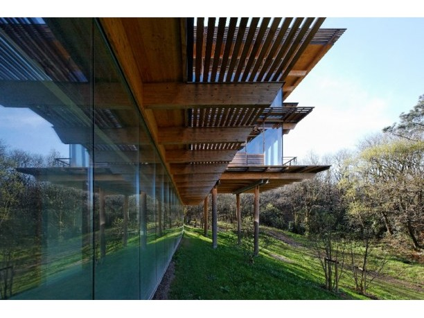 He Believed That There Were Underlying Principles In Nature Should Be Brought Into The Design Of A Building Felt Buildings Flow