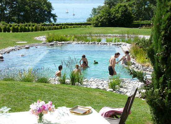 Natural swimming pool ecological for Natural pool design