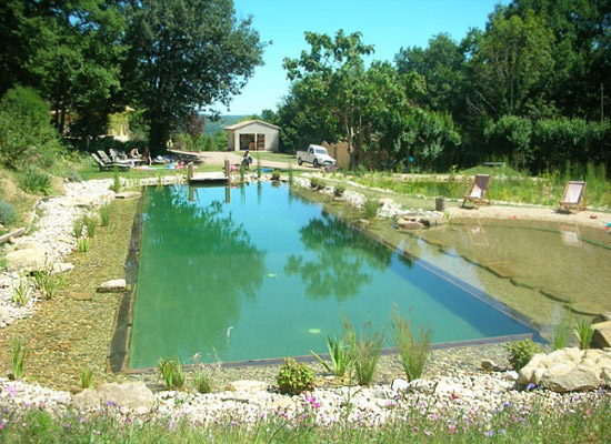 Beautiful Natural Swimming Pool Ecological  3
