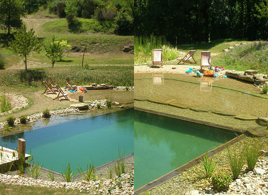 Natural swimming pool ecological 9 Natural swimming pool builders