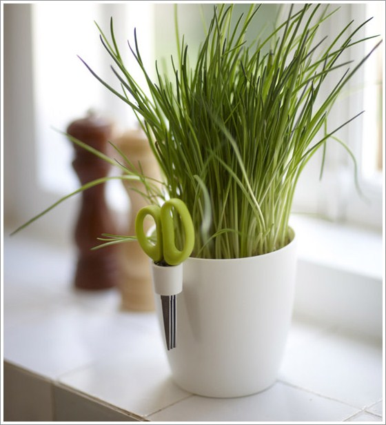 Emejing Indoor Herb Pots Photos - Interior Design Ideas ...