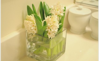 Flowers in small bathroom