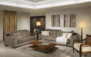 The Basics of Living Room