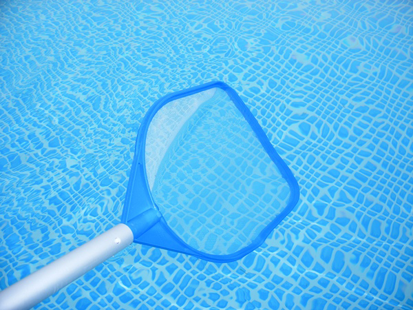 pool care schedule maintenance tips