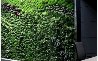 Vertical Garden as air purifier