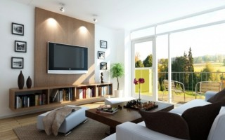 Decorating Ideas For a Living Room (1)